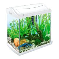 Tetra AquaArt Discovery Line Aquarium-Komplett-Set weiß (inklusive Tetra EasyCrystal FilterBox, ideal für die Haltung von Garnelen, Krebse oder tropischen Zierfische), verschiedene Größen