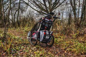Mit einem Buggy im Wald unterwegs