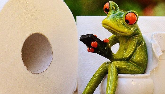 headerbild_Toilettenpapier-test