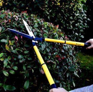 Manuelle Heckenschere Planted Perfect Teleskop von Anytime Garden im Einsatz