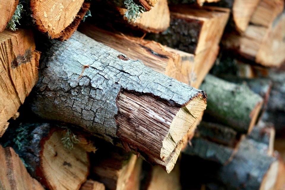 Wood 2909682