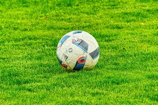Ball auf Rasen im Wolf Garten Turbo Nachsaat Rasensamen Test