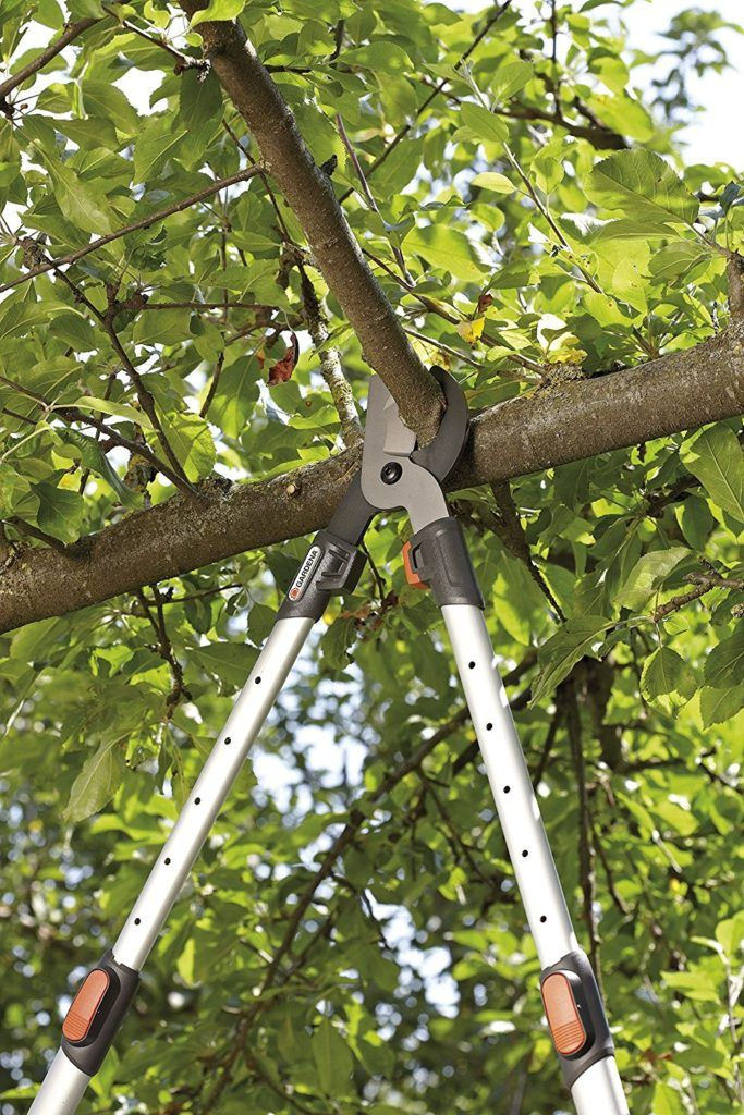Bypass-Baumschere im Test schneidet am Baum