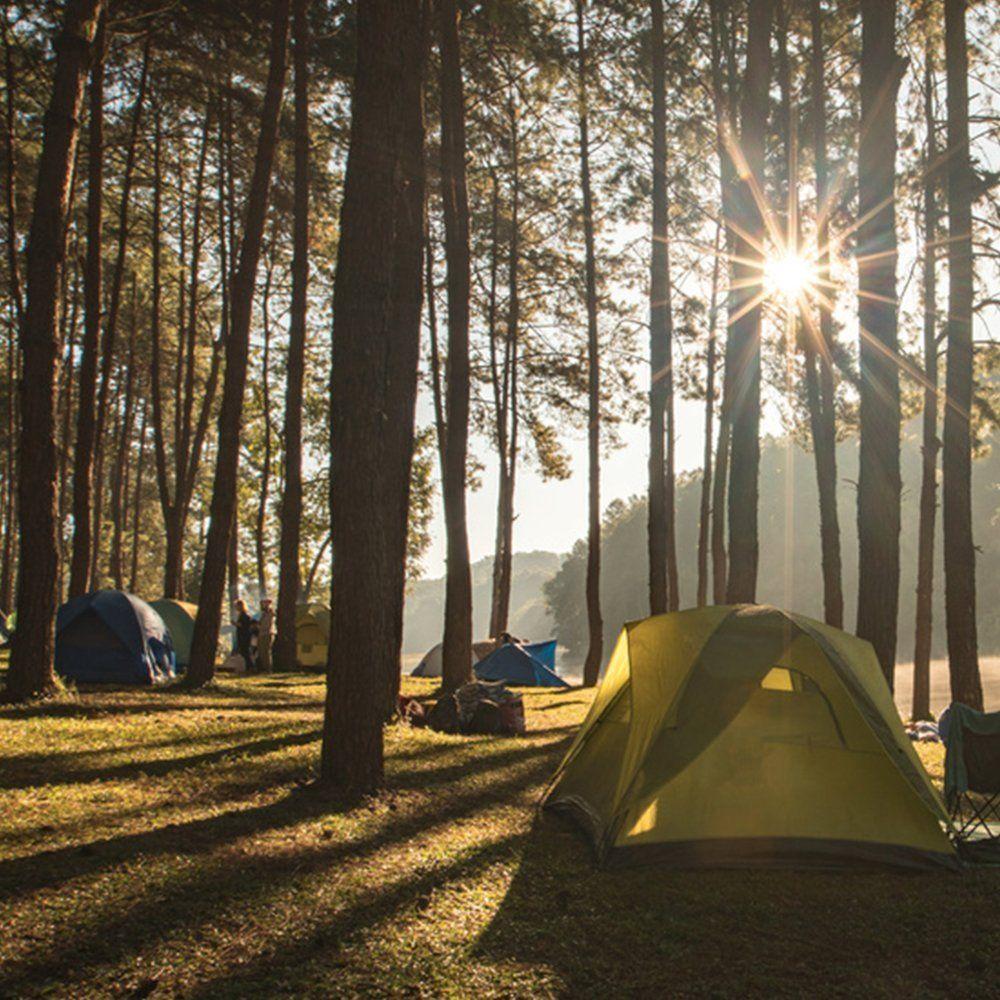 Familienzelt Test - Campingplatz in der Natur