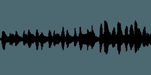 Die Lautstärke von Motorsensen im Test