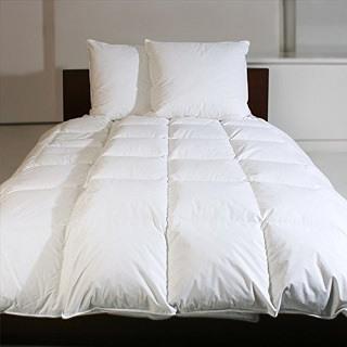 Die Revital 1304 Daunendecke passt sehr gut in jedes Bett Test
