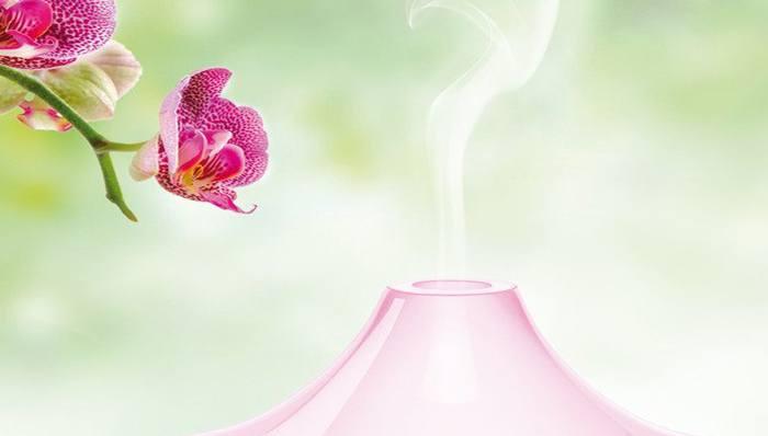 Aroma Diffusoren im Test auf ExpertenTesten