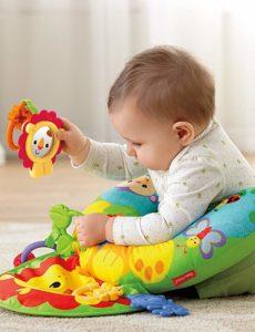Mattel Fisher-Price Y6593 - Baby Spielkissen, 9,5 x 27,9 x 30,5 cm