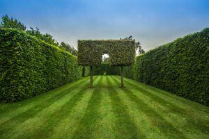 Heckenschneiden im Park mit Florabest im Akkuheckenscheren Test