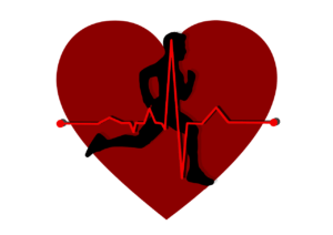 Herz Kreislauf