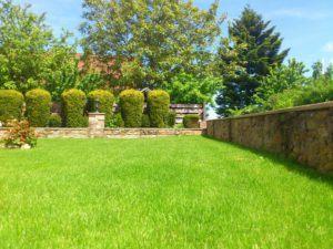 Schöner Garten mit der OBI Akku Heckenschere im Test