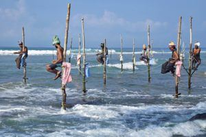 Fischer angeln auf besondere Art im Angelrollen Test