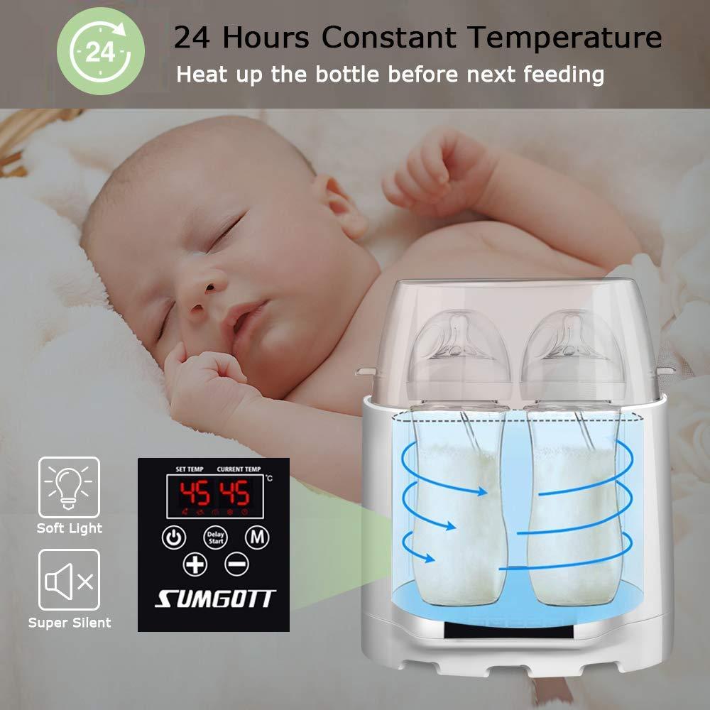 Babykostwärmer Test - Temperatur des Breis