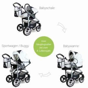 Welche Arten von 3-in-1-Kinderwagen gibt es in einem Test?