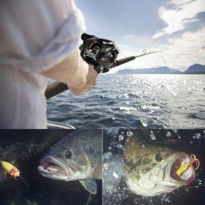 Mann fängt Fisch mit Mounchain Baitcaster Angelrolle im Test