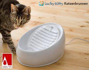 Vorteile aus einem Katzenbrunnen Test bei ExpertenTesten.de