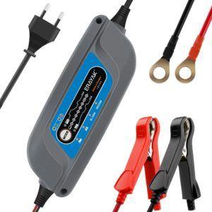Autobatterie Ladegerät Erayak