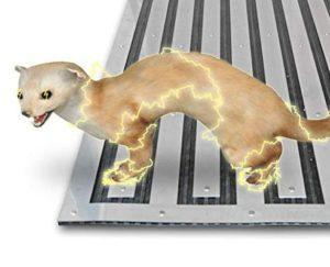 Illustration eines Hochspannung Marderschreck