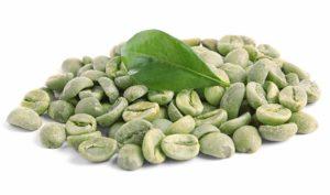 Magersucht der grünen Kaffeebohne