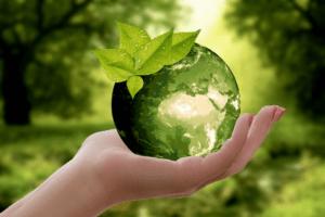 Das Thema Nachhaltigkeit wird immer wichtiger.