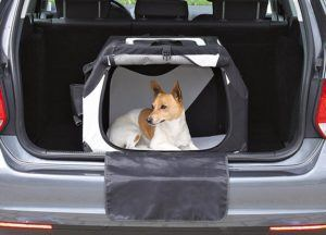 Vorteile aus einem Hundebox Test bei ExpertenTesten.de