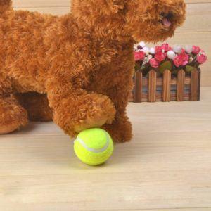 Die einfache Bedienung vom Tennisbälle Testsieger im Test und Vergleich