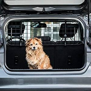 Das beste Zubehör für Hundbox im Test