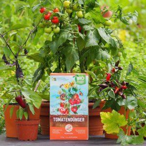 Sicherheitshinweise im Umgang mit Tomatendünger im Testvergleich