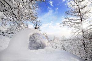 Die verschiedenen Anwendungsbereiche aus einem Wintergarten Testvergleich