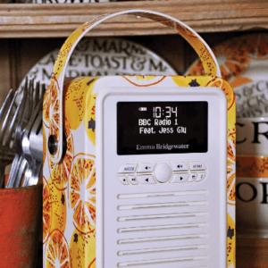 Welche Arten von DAB Radio gibt es in einem Test?