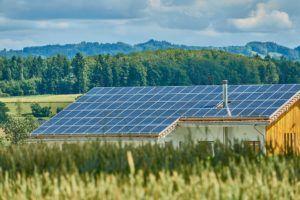Das Preis-Leistungs-Verhältnis vom Solaranlage Testsieger im Test und Vergleich