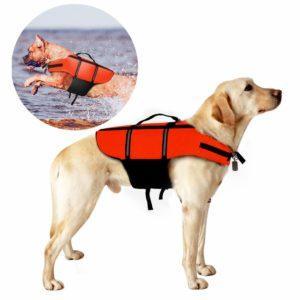 Was ist ein Hundeschwimmweste Test und Vergleich?