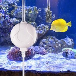 Wie funktioniert ein Aquarium Luftpumpen Test und Vergleich