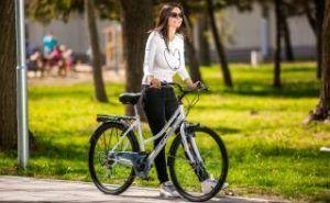 Citybike Damen Multibrand Distribution Probike Frau