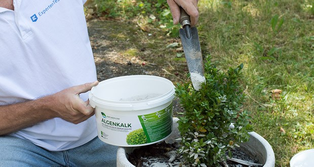 Algenkalk von Natureflow - nachhaltig und schonend abgebaut
