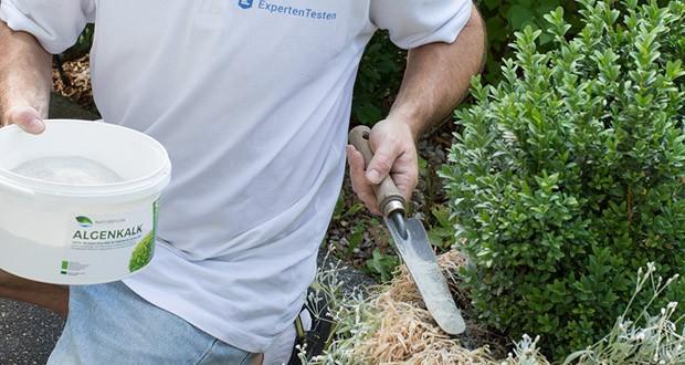 Algenkalk feinstes Pulver 100% rein für Buchsbaum von Natureflow im Test - einzigartiges Nährstoffprofil mit großer Wirkung