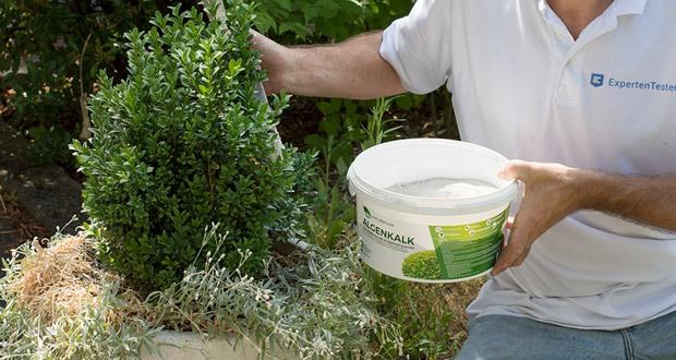 Algenkalk von Natureflow - Buchsbaumdünger und Naturdünger mit großer Wirkung