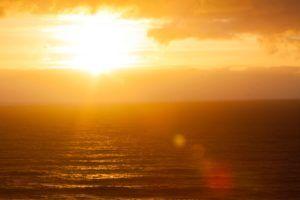 Sole Erdwärmepumpe im Test und Vergleich
