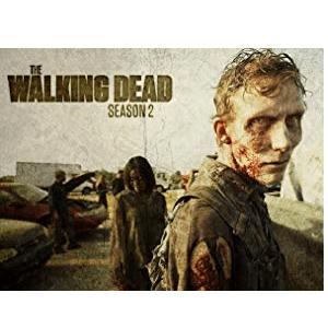 Die The Walking Dead Staffel 8 bei Amazon im Testvergleich kaufen