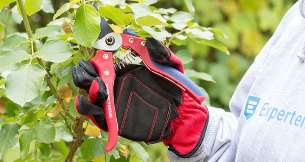 Spear & Jackson Razorsharp Bypass-Gartenschere im Test - ergonomische Softfeel-Griffe für erhöhten Komfort