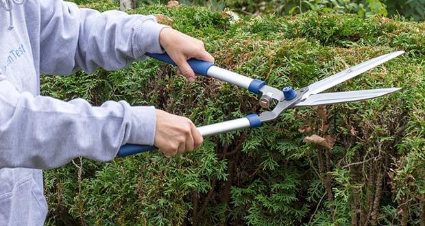 Spear & Jackson Razorsharp manuelle Heckenschere im Test - Ideal zum Schneiden und Zuschneiden von Hecken, Büschen und großen Sträuchern