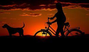 Rabatt mit Online- Gutschein von bike24
