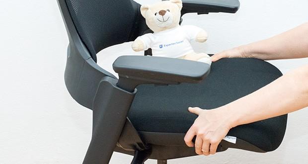Ergotopia NextBack Ergonomischer Bürostuhl im Test - Mit integrierter Lordosenstütze für eine gesunde Körperhaltung