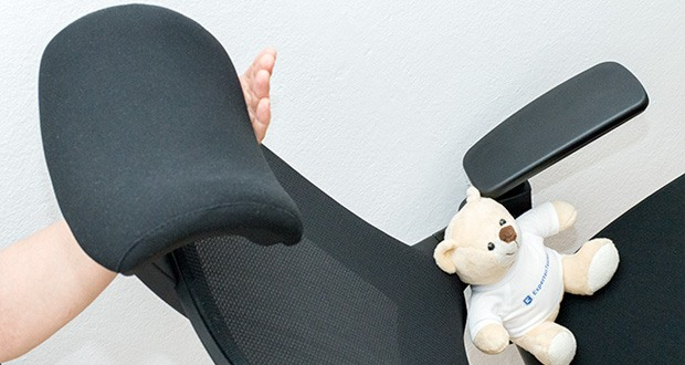 Ergotopia NextBack Ergonomischer Bürostuhl im Test - Mit angenehmer Kopfstütze, die Nacken- und Kopfschmerzen effektiv vorbeugt