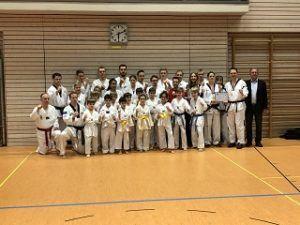 Ein Interview mit Florian Stahl vom Verein TSV Indersdorf Taekwondo