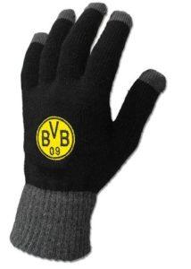 Handschuhe vom BVB im Test und Vergleich