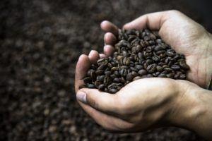 Nespresso Gutschein Rabattmöglichkeiten im Test