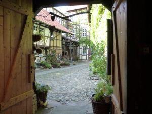 Aktivitäten Wernigeröder Kunst- und Kulturverein e.V. im Test