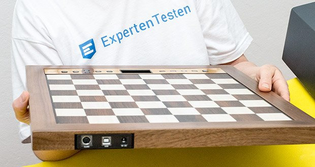 Millennium Schachcomputer The King Performance M830 im Test - Anschlüsse: USB, DIN, Netzteil (9V DC)