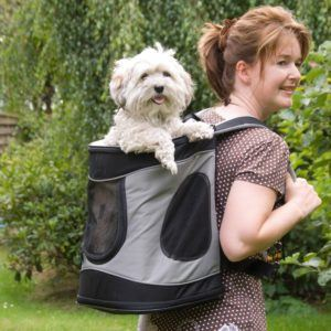 Frau mit Hunderucksack Tixie